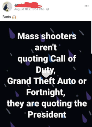They're not quoting the games.: Ja  August 10 at 3:14 PM  Facts  Mass shooters  aren't  quoting Call of  Duty,  Grand Theft Auto or  Fortnight,  they are quoting the  President They're not quoting the games.