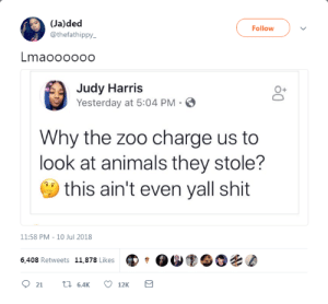 Animals, Dank, and Memes: (Ja)ded  @thefathippy  Follow  Lmaooooo0  Judy Harris  Yesterday at 5:04 PM .  0+  Why the zoo charge us to  look at animals they stole?  this ain't even yall shit  11:58 PM-10 Jul 2018  6,408 Retweets 11,878 Likes She got a point tho by phenomoo7 FOLLOW HERE 4 MORE MEMES.