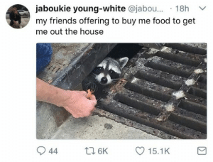 Food, Friends, and Real Friends: jaboukie young-white @jabou... 18h  my friends offering to buy me food to get  me out the house Real friends