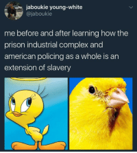 <p>Stay woke (via /r/BlackPeopleTwitter)</p>: jaboukie young-white  @jaboukie  me before and after learning how the  prison industrial complex and  american policing as a whole is an  extension of slavery <p>Stay woke (via /r/BlackPeopleTwitter)</p>