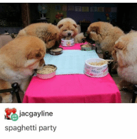 Memes, Party, and Spaghetti: jacgayline  spaghetti party BORK APPETIT - Max textpost textposts