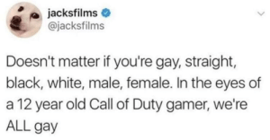 Dank, Memes, and Target: jacksfilms  @jacksfilms  Doesn't matter if you're gay, straight,  black, white, male, female. In the eyes of  a 12 year old Call of Duty gamer, we're  ALL gay Meirl by MussoIiniTorteIIini MORE MEMES