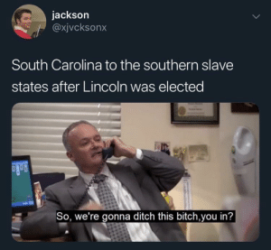 Some American Civil War for this sub: jackson  @xjvcksonx  South Carolina to the southern slave  states after Lincoln was elected  So, we're gonna ditch this bitch,you in'? Some American Civil War for this sub
