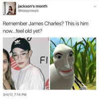 Don't get butthurt now 😂💀: jackson's month  @sippy coups  Remember James Charles? This is him  now...feel old yet?  FI  3/4/17, 7:14 PM Don't get butthurt now 😂💀