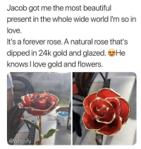 Beautiful, Love, and Memes: Jacob got me the most beautiful  present in the whole wide world I'm so in  love  It's a forever rose. A natural rose that's  dipped in 24k gold and glazed. He  knows I love gold and flowers.  @Whipify Tag someone you love below💝 @whipify are selling these 24k gold Forever roses! They are hand crafted🌹 The 50% OFF sale ends tomorrow! Link in @whipify bio! Hurry guys✨