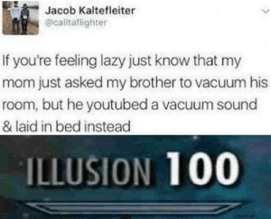 Modern problems require modern solutions via /r/memes http://bit.ly/2VgSC3Z: Jacob Kaltefleiter  @caltaflighter  If you're feeling lazy just know that my  mom just asked my brother to vacuum his  room, but he youtubed a vacuum sound  & laid in bed instead  ILLUSION 100  uicecrat Modern problems require modern solutions via /r/memes http://bit.ly/2VgSC3Z