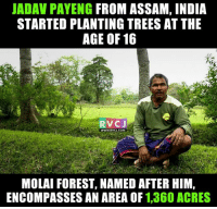 Did you know?: JADAV PAYENG FROM ASSAM, INDIA  STARTED PLANTING TREES AT THE  AGE OF 16  RV CJ  WWW RVCJ.COM  MOLAI FOREST, NAMED AFTER HIM,  ENCOMPASSES AN AREA OF  1,360 ACRES Did you know?