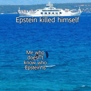 Who tf is Epstein: JADROLINIJA  Epstein killed himself  Me who  doesn't  know who  Epstein is Who tf is Epstein