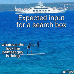 Fuck, Search, and Box: JADROLINIJA  Expected input  for a search box  whatever the  fuck the  pentest guy  is doing  u/T_j22 Always checking for vulnerabilities