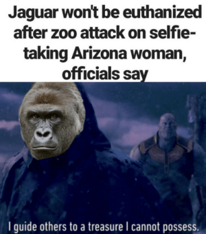 Selfie, Arizona, and Jaguar: Jaguar won't be euthanized  after zoo attack on selfie-  taking Arizona woman,  officials say  I guide others to a treasure I cannot posses The D is out again