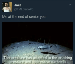 Pressure, Tumblr, and Http: Jake  @FMLDailyWC  Me at the end of senior year  This creature has adapted to the crushing  pressure and oppressive darknešs If you are a student Follow @studentlifeproblems​
