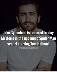 Thoughts? MarvelousJokes: Jake Gyllenhaal is rumored to play  Mysterio in the upcoming Spider-Man  sequel starring Tom Holland  Thoughts? MarvelousJokes