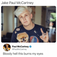 Memes, Image, and Hell: Jake Paul McCartney  ator  Paul McCartney  @PaulMcCartney  Bloody hell this burns my eyes Warning: this image may be cursed pls be careful