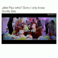 im dead my friend just ahowed me this i love scotty @vanilladingdong: Jake Paul who? Sorry I only know  Scotty Sire  @extraernst  COTTY SIRE im dead my friend just ahowed me this i love scotty @vanilladingdong