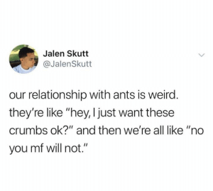 "Weird, Ants, and Will: Jalen Skutt  @JalenSkutt  our relationship with ants is weird.  they're like ""hey, I just want these  crumbs ok?"" and then we're all like ""no  you mf will not."""