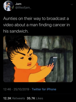 They'll share everything! by KingPZe MORE MEMES: Jam  @lifeofjam  Aunties on their way to broadcast a  video about a man finding cancer in  his sandwich.  12:46 25/10/2019 Twitter for iPhone  12.3K Retweets 35.7K Likes They'll share everything! by KingPZe MORE MEMES