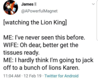 Nala can get it though: James  @APowerfulMagnet  [watching the Lion Kingl  ME: I've never seen this before.  WIFE: Oh dear, better get the  tissues ready.  ME: I hardly think I'm going to jack  off to a bunch of lions Karen.  11:04 AM 12 Feb 19 Twitter for Android Nala can get it though