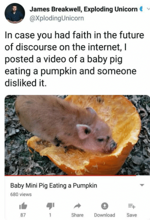 Future, Internet, and Pumpkin: James Breakwell, Exploding Unicorn  @XplodingUnicorn  In case you had faith in the future  of discourse on the internet, l  posted a video of a baby pig  eating a pumpkin and someone  disliked it.  Baby Mini Pig Eating a Pumpkin  680 views  87  Share Download  Save