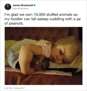 Truer words have never been spoken James: James Breakwell  eXplodingUnicorn  I'm glad we own 10,000 stuffed animals so  my toddler can fall asleep cuddling with a jar  of peanuts  6:42 PM - 20 May 2017 Truer words have never been spoken James