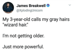 "we're wizards ✨: James Breakwell  @XplodingUnicorn  My 3-year-old calls my gray hairs  ""wizard hair.""  I'm not getting older.  Just more powerful we're wizards ✨"