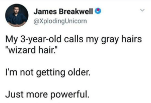 "Dank, Twitter, and Hair: James Breakwell  @XplodingUnicorn  My 3-year-old calls my gray hairs  ""wizard hair.""  I'm not getting older.  Just more powerful. (credit: @xplodingunicorn/twitter)"