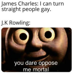 Sister sorry: James Charles: I can turn  straight people gay.  J.K Rowling:  you dare oppose  me mortal Sister sorry