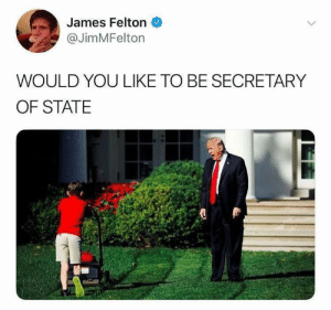 Dank, Memes, and Reddit: James Felton  @JimMFelton  WOULD YOU LIKE TO BE SECRETARY  OF STATE Is this how the hiring process works there? by TRPC-Sam FOLLOW 4 MORE MEMES.