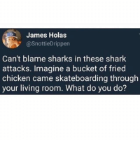 I'm saying tho..💯😂😂: James Holas  @SnottieDrippen  Can't blame sharks in these shark  attacks. Imagine a bucket of fried  chicken came skateboarding through  your living room. What do you do? I'm saying tho..💯😂😂