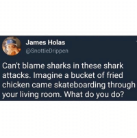 Memes, Shark, and Chicken: James Holas  @SnottieDrippen  Can't blame sharks in these shark  attacks. Imagine a bucket of fried  chicken came skateboarding through  your living room. What do you do?
