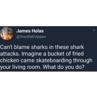 Ass, Fuck You, and Memes: James Holas  @SnottieDrippen  Can't blame sharks in these shark  attacks. Imagine a bucket of fried  chicken came skateboarding through  your living room. What do you do? He's right cause if a bucket of ass was just sitting there In the fridge I'm going face first no napkins fuck you mean