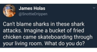 Shark, Chicken, and Sharks: James Holas  @SnottieDrippen  Can't blame sharks in these shark  attacks. Imagine a bucket of fried  chicken came skateboarding through  your living room. What do you do? @Rare.TrashOfficial