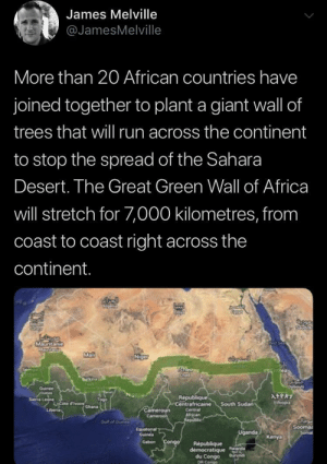 Africa, Run, and Tumblr: James Melville  @JamesMelville  More than 20 African countries have  joined together to plant a giant wall of  trees that wil run across the continent  to stop the spread of the Sahara  Desert. The Great Green Wall of Africa  will stretch for 7,000 kilometres, from  coast to coast right across the  continent.  MSuntanie  Mal  Niget  SIGan  TCha  urk  Duibouti  Goinee  oures  Sea Le rchana  ATPRY  Republique  Centrafricaine  Etvo  South Sudan  Cameroun  Camen  Lberia  Centra  African  Realic  Gut of Ouele  Sooma  Sormal  Equaterial  Guines  Uganda  Kenya  Gabon Congo  Republique  democratique Rnda  du Congo  DR Cango  Buruns awesomacious:  A wall to be proud of!