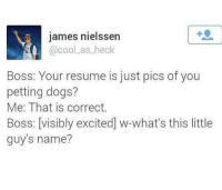 Dogs, Love, and Cool: james nielssen  @cool as heck  Boss: Your resume is just pics of you  petting dogs?  Me: That is correct.  Boss: [visibly excited] w-what's this little  guy's name? <p>I love dogs</p>
