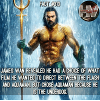 Memes, The Flash, and Film: JAMES WAN REVEALED HE HAD A CHOICE OF WHAT  FILM HE WANTED TO DIRECT BETWEEN THE FLASEH  AND AQUAMAN, BUT CHOSE AQUAMAN BECAUSE HE  IS THE UNDERDOG With how much trouble The Flash film is having getting off the ground (if it ever does...) sounds like he made the right call. Aquaman TheFlash