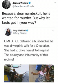 Driving, Facts, and Memes: James Woods  RealJamesWoods  Because, dear numbskull, he is  wanted for murder. But why let  facts get in your way?  Amy Siskind  @Amy_Siskind  OMFG. ICE detained a husband as he  was driving his wife for a C-section.  She had to drive herself to hospital.  The cruelty and inhumanity of this  regime! (GC)