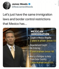 James Woods: James Woods  @RealJamesWoods  Let's just have the same immigration  laws and border control restrictions  that Mexico has...  MEXICAN  IMMIGRATION  Caught in Mexico lllegally:  2 years in prison (Article 123  Deported and Caught  Re-Entering:  O years in prison (Article 118)  Marry a Foreigner to Help  Them Enter Country  5 years in prison (Article 127),