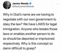 Memes, Immigration, and Government: James Woods  @RealJamesWoods  Why in God's name are we having to  negotiate with our own government to  obey the law? We have LAWS for legal  immigration. Anyone who breaks those  laws or enables another person to do  so should be deported or imprisoned  respectively. Why is this concept so  damn difficult to grasp? BOOM!  Do you agree with James Woods on this point?