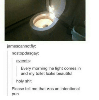 oh my: jamescannot fly:  nostopdasgay:  everets:  Every morning the light comes in  and my toilet looks beautiful  holy shit  Please tell me that was an intentional  pun oh my