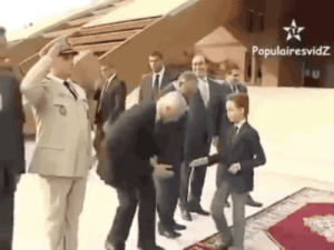 "Definitely, Kahoot, and Prince: jamesstandrew: kahoot-yaqoot:   mistamarqui2u:  gifsboom:  Moulay Hassan, Crown Prince of Morocco hates it when you try to kiss his hand.   Thas the fastest snatch ever   This is all traditional in Morocco. The royalty are supposed to reject hand kisses as a show of humbleness. It's kind of like when someone bows to royalty and the king goes, ""No no, no need to bow"".  It's not that the prince is a snobby kid—it's just what he's supposed to do.   I've seen this post before so many time but never before with that last addition. The added context definitely changes things"