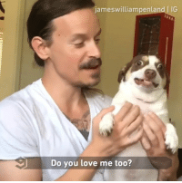 Love me, love me not? What do you think? - By @jameswilliampenland @misterbubz @lizze.gordon - mixedsignal hiss hellhound: jameswilliampenland IG  Do you love me too? Love me, love me not? What do you think? - By @jameswilliampenland @misterbubz @lizze.gordon - mixedsignal hiss hellhound