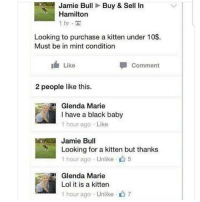 Lol, Memes, and Black: Jamie BullBuy & Sell In  Hamilton  hr  Looking to purchase a kitten under 10$.  Must be in mint condition  I Like  Comment  2 people like this.  Glenda Marie  I have a black baby  1 hour ago Like  Jamie Bul  Looking for a kitten but thanks  1 hour ago . Unlike-山5  Glenda Marie  Lol it is a kitten  1 hour ago Unlike  7 nooo ! 😂 @epicfunnypage is literally the funniest page 👌🏻👌🏻