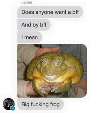 Hmmmm: Jamie  Does anyone want a bff  And by bff  I mean  Big fucking frog Hmmmm