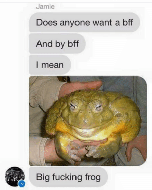 Fucking, Memes, and Mean: Jamie  Does anyone want a bff  And by bff  l mean  Big fucking frog yes