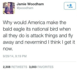 America, Eagle, and Bald Eagle: Jamie Woodham  @jwoodham  Why would America make the  bald eagle its national bird when  all they do is attack things and fly  away and nevermind I think I get it  now.  9/29/14, 9:19 PM  2,308 RETWEETS 3,003 FAVORITES