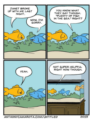 "Plenty of Fish [OC]: JANET BROKE  UP WITH ME LAST  NIGHT  YOU KNOW WHAT  THEY SAY THOUGH  ""PLENTY OF FISH  IN THE SEA."" RIGHT?  Wow, I'M  SORRY  NOT SUPER HELPFUL  BIGHT NOW THOUGH  YEAH  ANTHONYCAMAROTA.COM/UNTITLED  2019 Plenty of Fish [OC]"