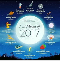 Heading into 2017 🌚: January 12  February no  December 3  WOLF MOON  SNOW MOON  COLD MOON in Cancer  in Gemini  in Leo  November 4  March 12  BEAVER MOON  WORM MOON  in Taurus  in Virgo  Com  Full Moons of  October 5  April 11  2017  HUNTER'S MOON  PINK MOON  in Aries  in Libra  September 6  May 10  HARVEST MOON  FLOWER MOON  in Pisces  in Scorpio  August 7  June 9  STURGEON MOON  STRAWBERRY MOON  in Aquarius  in Sagittarius  July 9  THUNDER MOON  in Capricorn Heading into 2017 🌚