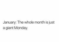 Giant, Monday, and Just: January: The whole month is just  a giant Monday Anyone else agree?!