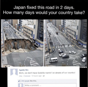 Can't stop laughing: Japan fixed this road in 2 days.  How many days would your country take?  Squishy Rex  Bitch, we don't have Godzilla roamin' on streets of our country!  Like Comment 5 hours ago  2361 people like this.  Write a comment Can't stop laughing