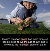 Memes, Earth, and Japan: Japan's Okinawa Island has more than 450  people living above the age of 100, and is  known as the healthiest place on Earth.  fb.com/facts Weird