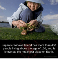 Dank, Earth, and Japan: Japan's Okinawa Island has more than 450  people living above the age of 100, and is  known as the healthiest place on Earth.  fb.com/factsweird